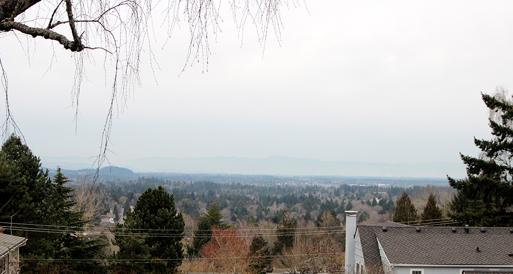 View of Tualatin Valley North of Multnomah, January 27, 2014.