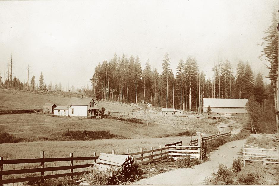 Hoffman Dairy Farm ca. 1890