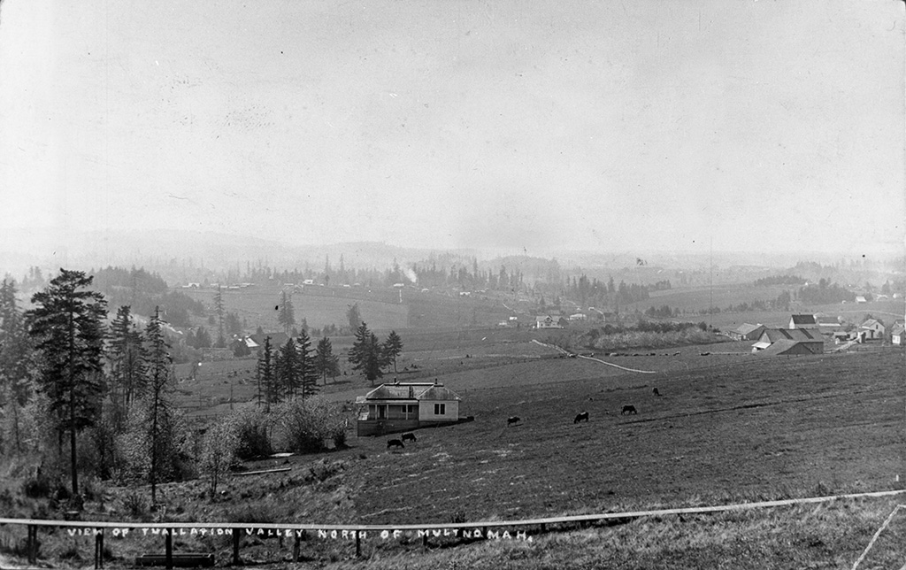 View of Tualatin Valley North of Multnomah