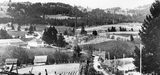 Shattck Road ca. 1900.