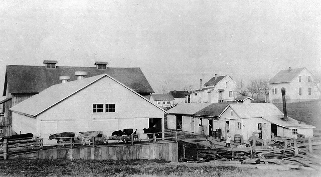 Multnomah (Tannler) Dairy Farm, ca. 1928.