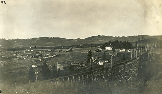 Maplewood Trestle ca. 1913, looking NE.