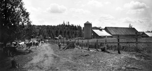 Feuz Farm, Now Part of Gabriel Park, ca. 1930.